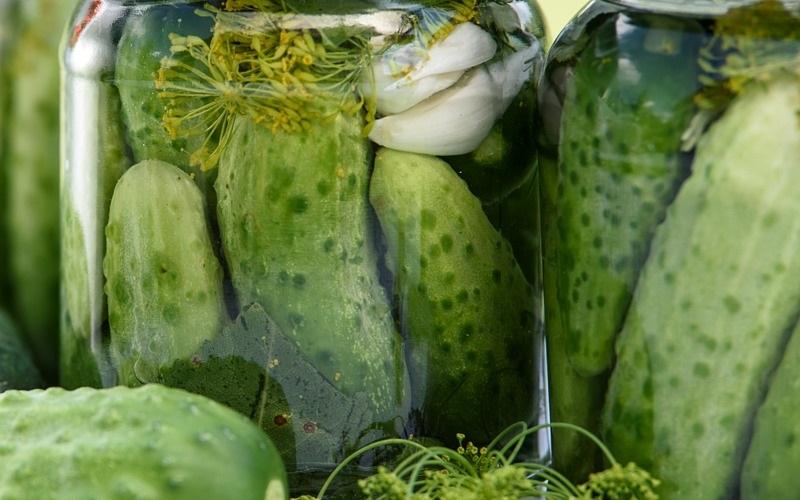 Eingelegte Gurken bieten den Vorteil, dass sie reich an bioaktiven Substanzen sind