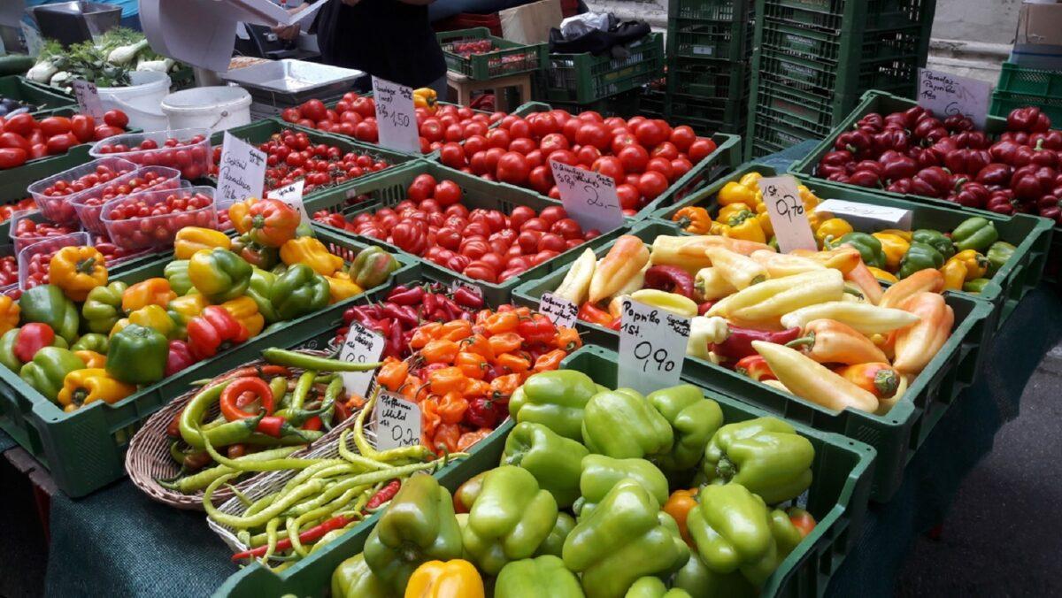 Erntehelfer gesucht - wir helfen sofort Gemüse und Obst im November. Der November ist Nass kalt und windig und der Winter kündigt den nahenden Winter an aber für einige Obst und Gemüsesorten beginnt jetzt die Ernte-Saison.  Grünkohl, Rosenkohl werden frisch geerntet ebenso wie Chicorée und Kopfsalat oder Zwiebeln und Radicchio. Wenn es so richtig kalt wird, schmeckt der Grünkohl besonders gut welcher zudem ein guter Lieferant für viel Vitamin C ist nur Quitten gibt es im Überfluss.  Im Freiland wird jetzt geerntet - Blumenkohl Brokkoli, Chinakohl, Grünkohl, Knollenfenchel, Kürbis, Möhren, Lauch, Rettich, Rosenkohl, Rotkohl, Schwarzwurzel, Sellerie, Speiserüben, Spinat, Spitzkohl, Steckrüben, Weißkohl, Wirsingkohl oder Zwiebeln. Salate wie Endiviensalat, Feldsalat, Radicchio, Rom