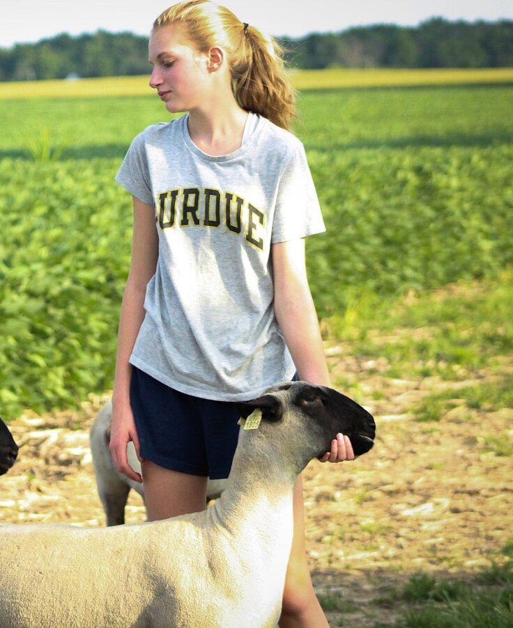 Junge Landwirten, streichelt Scharf im Hintergrund grünes bepflanzest Ackerland